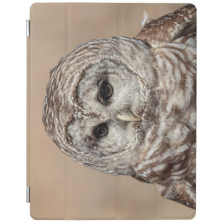Coruja barrada capa smart para iPad