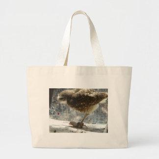 coruja bolsa