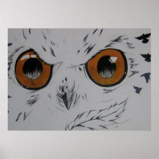 Coruja com pássaros, meu desenho poster