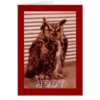 Coruja de buzina, o cartão dos namorados