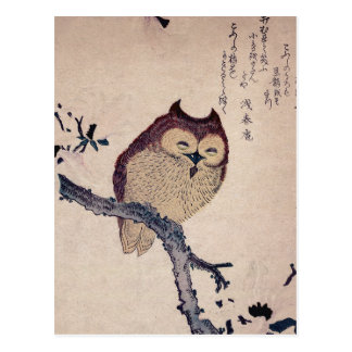 Coruja de sorriso japonesa bonito cartão postal