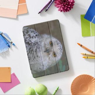 Coruja nevado, Schnee-Eule Capa Para iPad Pro