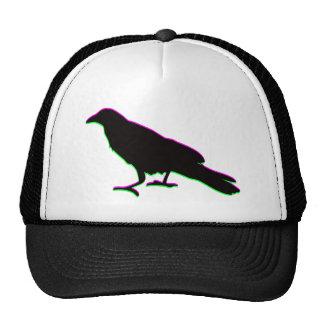 corvo boné