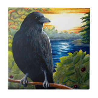 Corvo do pássaro 63