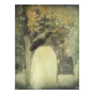 Corvo velho do cemitério impressão de foto