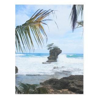 costa de Costa-Rica Cartão Postal