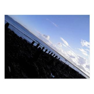 Costa de St Ives Cartão Postal