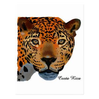 Costa Rica Jaguar Cartões Postais
