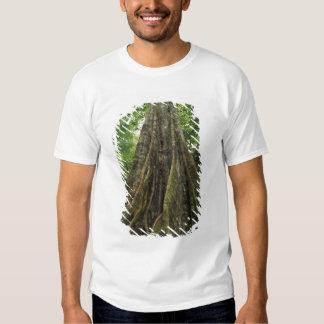 Costa Rica, parque nacional de Corcovado, Camiseta