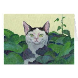 Couro cru do gato - e - cartão da busca