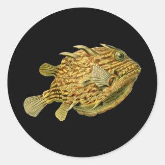 Cowfish listrado adesivo