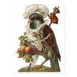 Cozinheiro chefe do pássaro cartão postal