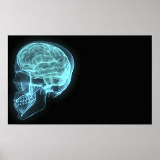 Crânio de néon azul do raio X da vista lateral no  Posters