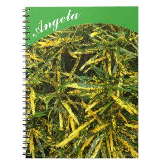 Criar seu próprio caderno - verde