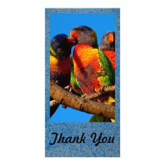Criar seu próprio obrigado você cartão com fotos