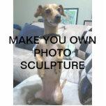 Criar sua própria escultura da foto escultura de foto