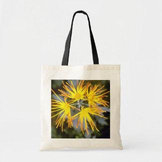crisântemo amarelo saga Koyo florista Chrysant Bolsa Para Compra