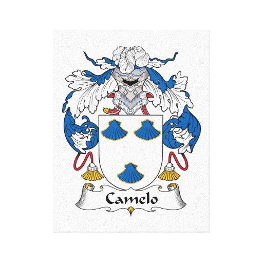 Crista da família de Camelo Impressão De Canvas Envolvida
