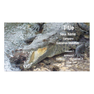 Crocodilo jamaicano da água salgada cartão de visita