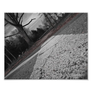 Cruzando a estrada 8x10 impressão de foto