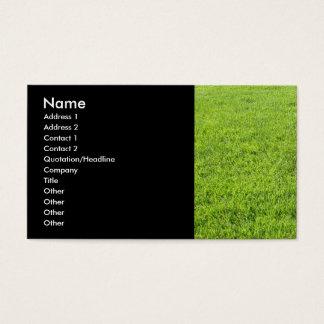 Cuidado do gramado cartão de visitas