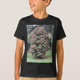 Cultivar antigo da flor do japonica da camélia camiseta