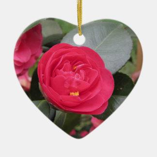 Cultivar japonês antigo do japonica vermelho da ornamento de cerâmica