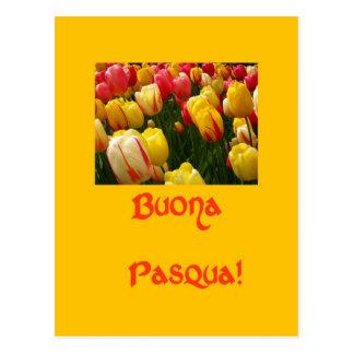 cumprimento amarelo da páscoa das tulipas misturad cartões postais