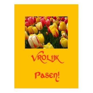 cumprimento amarelo da páscoa das tulipas misturad cartão postal