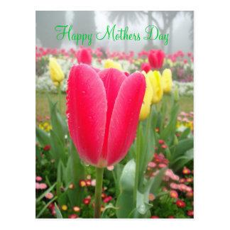 Cumprimento do feliz dia das mães do jardim da cartão postal