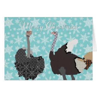 Cumprimento santamente do Natal da avestruz de O Cartão Comemorativo