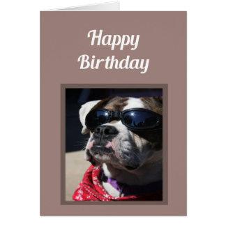 """Cumprimento """"sexy"""" do cão do pugilista do cartão comemorativo"""