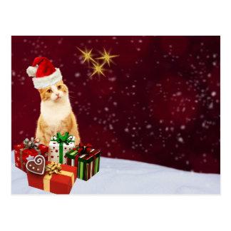 Cumprimentos bonitos do Feliz Natal do gato Cartão Postal