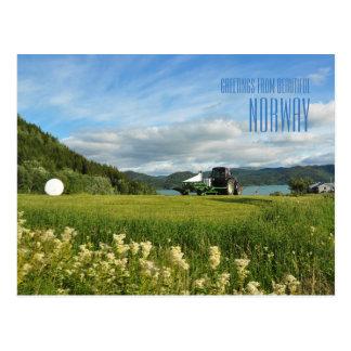 Cumprimentos do cartão com fotos do verão de