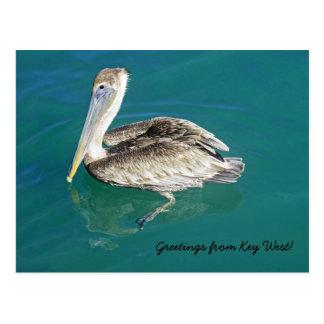 Cumprimentos do cartão de Key West