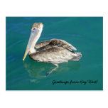 Cumprimentos do cartão de Key West Cartão Postal