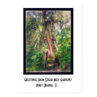 Cumprimentos do cartão dos jardins do moinho de