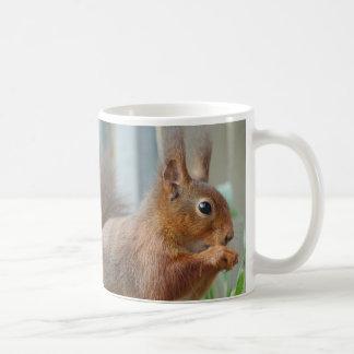 Cup SQUIRREL esquilo Écureuil de JL Glineur Caneca De Café