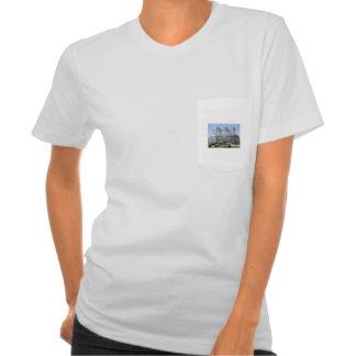 Curitiba Paraná - Jardim Botânico Camisetas