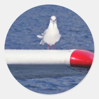 Cute Seagull White - bordadores Adesivo