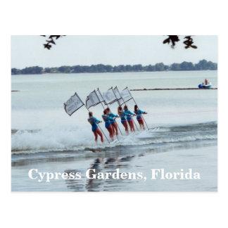 Cypress jardina cartão do esqui aquático das