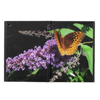~ da borboleta do Fritillary