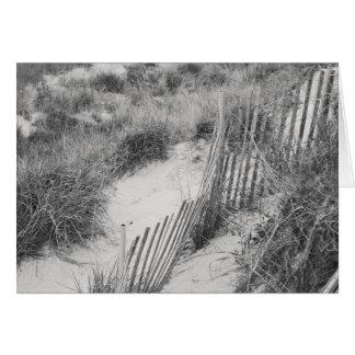 """Da """"coleção cerca e das dunas"""" cartão comemorativo"""
