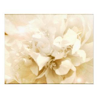 Da flor branca da dália do vintage foto floral impressão de foto