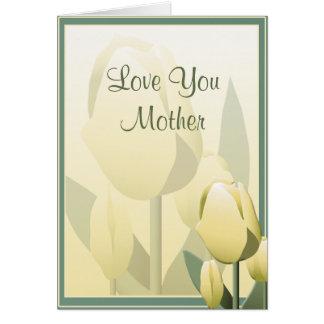 Da tulipa bonita do primavera do dia das mães