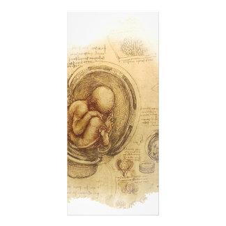 da Vinci - esboço do embrião Panfletos Informativos Personalizados