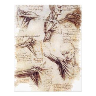 da Vinci -- Esboço do ombro Modelos De Papel De Carta