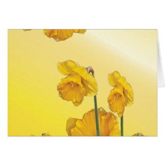 Daffodil amarelo do narciso cartão de nota