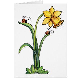 Daffodil - cartão