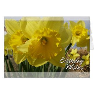 Daffodils/aniversário do narciso cartão